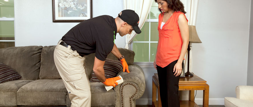 Zanesville, OH carpet upholstery cleaning